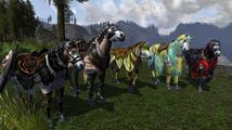 The Lord of the Rings Online: Riders of Rohan