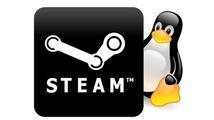 Dle Newella je Windows 8 katastrofa, Valve sází  na Linux
