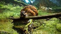 Monster Hunter Online se chlubí velkými potvorami