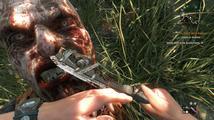 Prodeje Dying Light překračují veškerá očekávání tvůrců, Hellraid prý není mrtvý