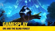 GamesPlay: hrajeme obtížnou, ale nádhernou plošinovku Ori and the Blind Forest