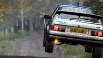 DiRT Rally - recenze