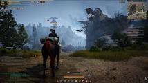 Black Desert Online - jak se hraje a kam směřuje populární MMORPG