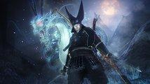 Rozšíření Dragon of the North pokračuje v příběhu Nioh a přidává PvP