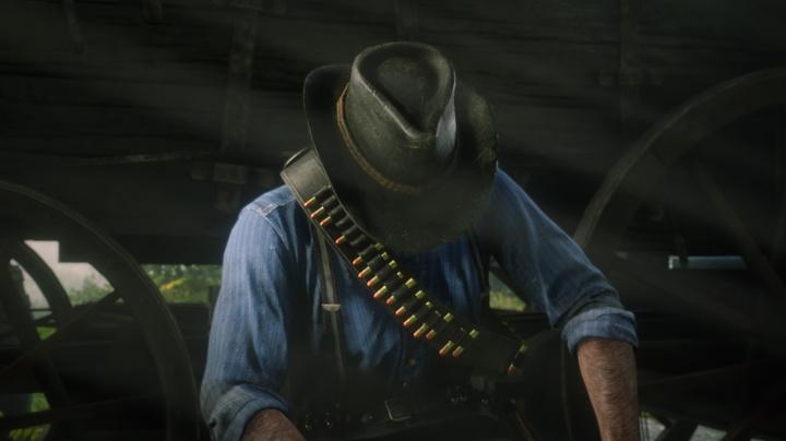 Red Dead Redemption II obrazem