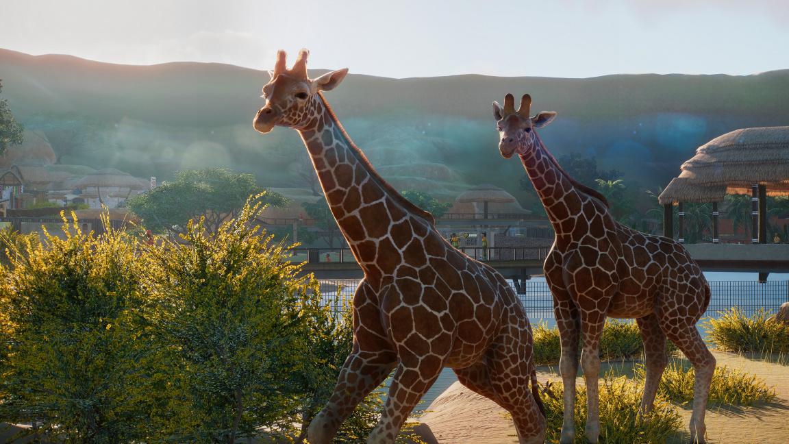 Planet Zoo je tycoon plný roztomilých zvířátek