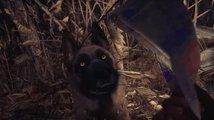 Herní horor Blair Witch ukazuje záběry z hraní s pejskem