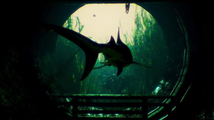 Na hladině se objevuje ploutev krvelačného žraloka. Maneater zaútočí v pátek