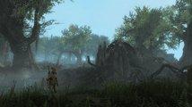 Ambiciózní fanouškovský mod Skywind vypadá jako profesionální remake milovaného Morrowindu