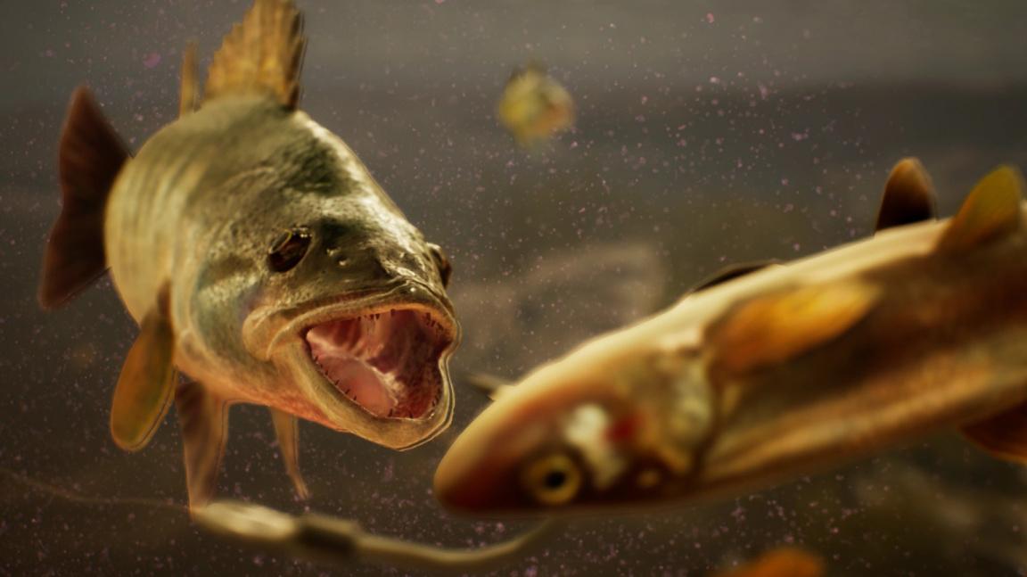 Může být simulátor rybaření cool? Po zhlédnutí traileru The Catch už nebudete pochybovat