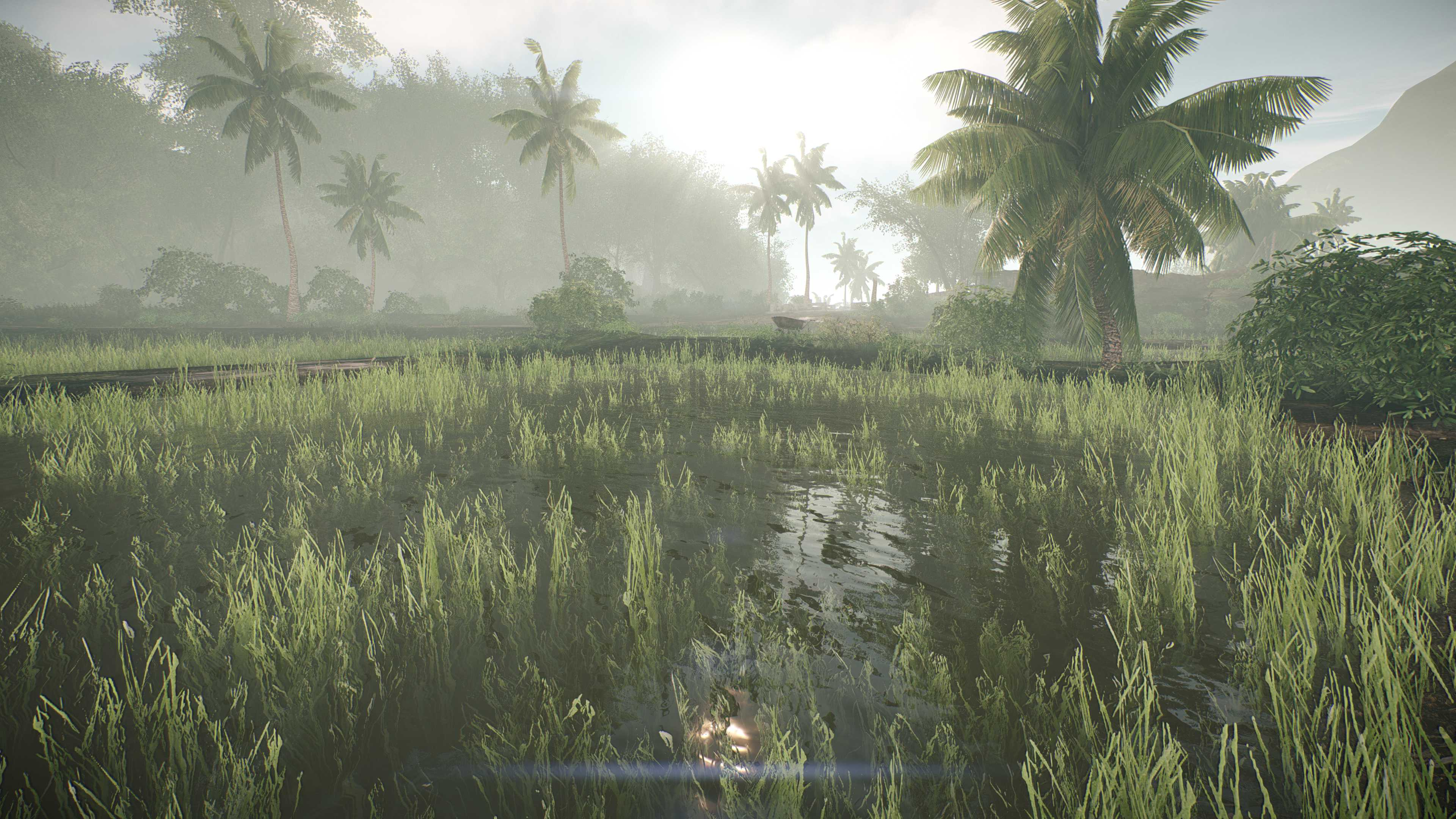 Crysis Enhanced Edition
