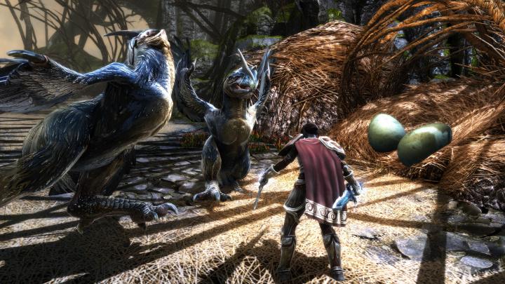 Remaster RPG Kingdoms of Amalur: Reckoning dostane nové rozšíření