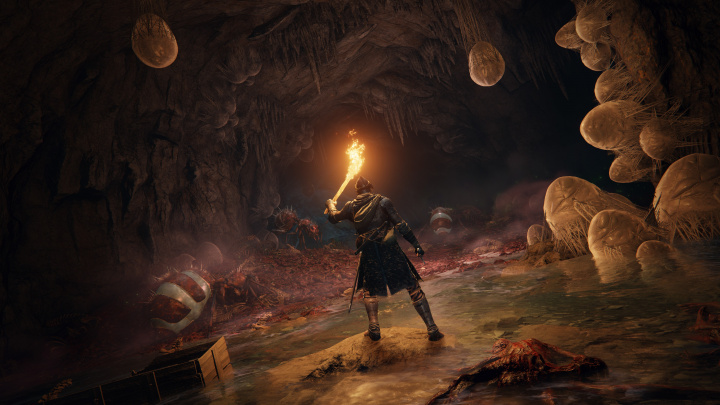Mijazaki promluvil: Obří nadílka nových informací o Elden Ringu