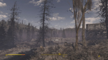 Fallout 4: The Wilderness mode