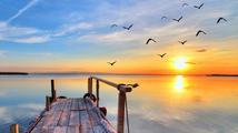 Slunce je dárcem života