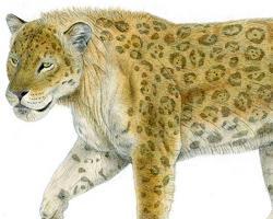 Panthera gombaszoegensis
