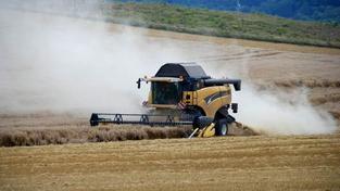 Zemědělci mohou ode dneška žádat dotace, Foto: SXC