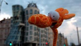 Cestovní kancelář pro plyšová zvířátka vznikla v Česku