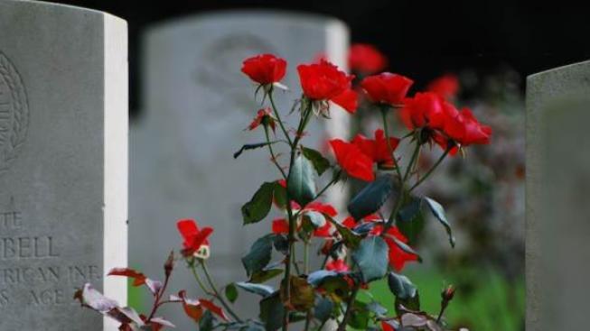 Kdo může získat vdovský, vdoveckého nebo sirotčí důchod? Foto: SXC
