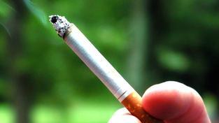 V České republice kouří 29 procent obyvatel starších 15 let, tedy zhruba dva miliony lidí, Foto: SXC
