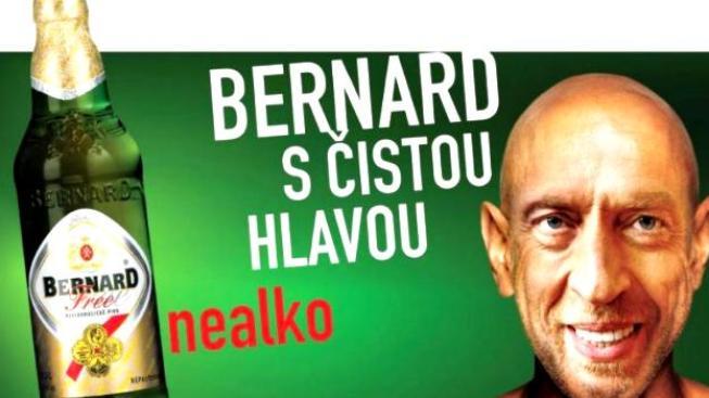 """Pokud by Birell nealkoholické pivo z produkce pivovaru Bernard porazil, zavazuje se Bernard , že přejmenuje nealkoholické pivo """"Bernard s čistou hlavou"""" na """"Bernard s ušatou hlavou""""."""