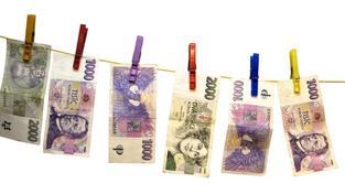 Příjmy státního rozpočtu dosáhly ke konci července 586,6 miliardy korun, zatímco výdaje byly 655,6 miliardy korun, Foto: SXC