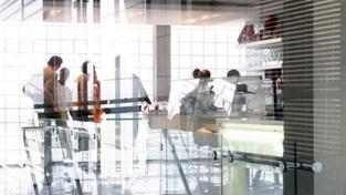 Nové pracovní možnosti se podle odborníků otevřely i pro vysokoškolské absolventy, Foto:SXC