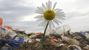 Modrrnizaci spaloven by mohly zaplatit fondy z EU, Foto:SXC