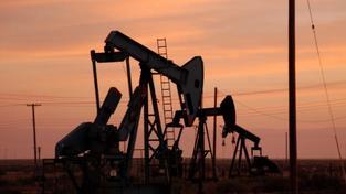 Vedení společnosti tak rozhodlo po důkladné analýze stávající makroekonomické situace. Jedním z faktorů, který rozhodl o ukončení zpracování ropy, je i nízká komplexnost rafinérie Paramo, Foto:SXC