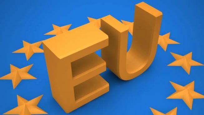 Kromě České republiky, která se vloni vrátila na hodnoty z roku 2008, se v tomto ohledu dařilo také Nizozemsku a Švédku, Foto:SXC