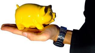 Problémy s vysokými úrokovými náklady u starých smluv se stavební spořitelny pokoušely řešit už před bezmála deseti lety navýšením výnosů z poplatků. Foto:SXC