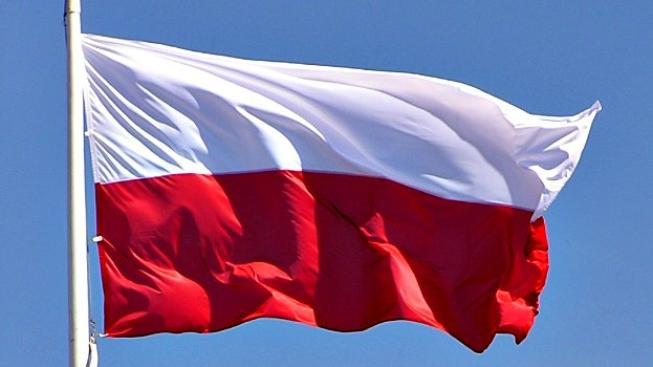 Smyslem reformy je najít peníze na investice do hospodářství, které sice nikdy nespadlo do recese, ale výrazně zpomalilo. Znárodnění dluhopisů v polských penzijních fondech a další kroky přinesou polskému státu obrovské prostředky, respektive úspory, kter