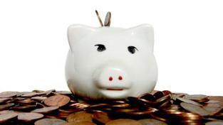 Státní podpora klesla zhruba na pět miliard korun ročně, což je o 57 procent méně, než tomu bylo v roce 2010. I přesto lidé nad stavebním spořením nezlomili hůl. Foto:SXC