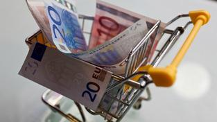 Domácnosti začaly v loňském roce konečně utrácet. Výdaje na jednoho člena domácnosti vzrostly v průměru o 1,3 procent oproti roku předchozímu, na 11 253 korun měsíčně. Foto:SXC