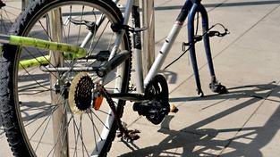 Pojišťovny často jízdní kola pojistí v rámci pojištění domácnosti. Máte-li drahé kolo, můžete si pak s pojišťovnou vyjednat připojištění jízdního kola na vyšší plnění. Foto:SXC