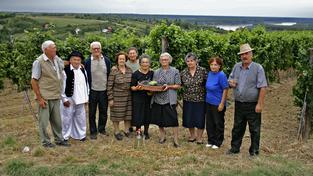 Čeští důchodci si stále stěžují. Nemáte se vůbec špatně vzkazuje světový průzkum