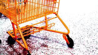 Spotřební zboží nakupujeme častěji než v minulosti