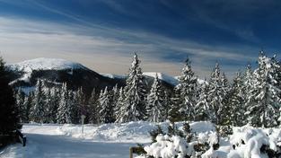 """Zánik """"Ladovské zimy"""" jako ekonomický fenomén"""