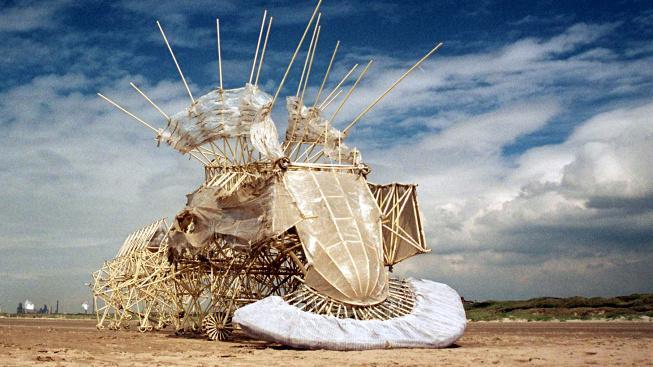 Strandbeests získaly svůj název z holandského strand (pláž) a beest (zvíře, bestie)