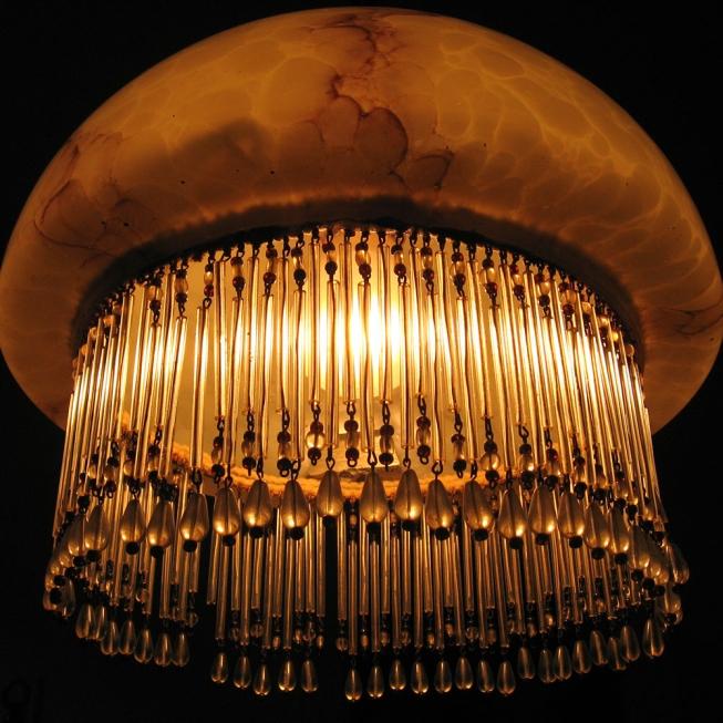 Medúza lampová