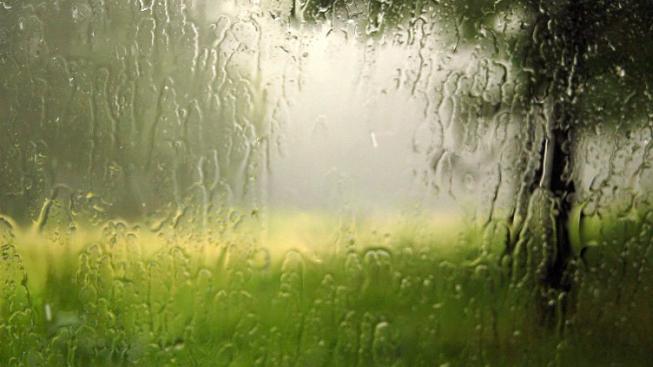 Voní vám, když prší?