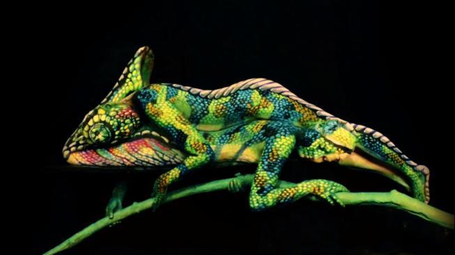 Spousta barvy, šikovně poskládané končetiny a iluze chameleona je dokonalá