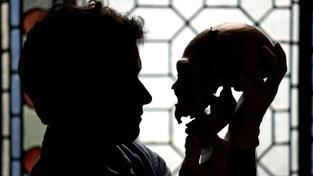 Ilustrační snímek: Vědec zkoumá lebku předchůdce člověka z naleziště Sima de los Huesos