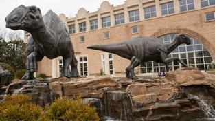 Kosti Hadrosaura byly nacházeny nejčastěji v USA a Kanadě. Ilustrační foto