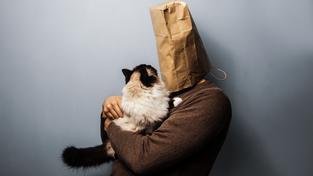To, že se kočky vážou spíš na konkrétní domov než na osobu, se všeobecně ví. Není to ale tak, že by jim jejich majitel byl úplně volný
