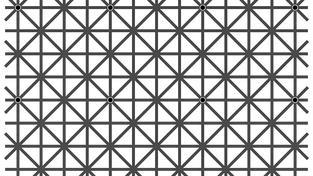 Lidský zrak má hodně omezené periferní vnímání, jak dokazuje tento vizuální trik