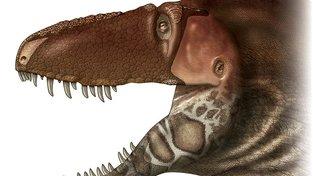 Daspletosaurus horneri