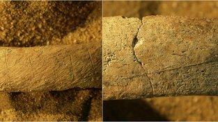 Stopy nože na dvou žeberních fragmentech