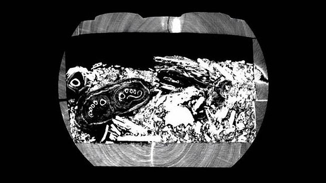 Obsah sarkofágu na tomografu