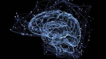 Implantáty vylepšující paměť úspěšně prošly prvními testy na lidech